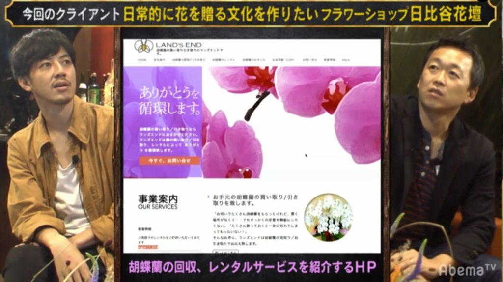 胡蝶蘭の回収、レンタルサービス